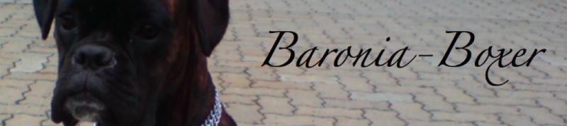 Baronia Boxer