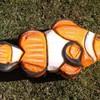 Clownfisch (WA-Gr. 4)