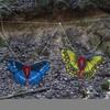 Schmetterlinge (WA-Gr.-4)