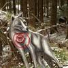 Wolf stehend (WA-Gr. 2)