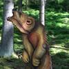 Grizzly aufrecht (WA-Gr.:1)