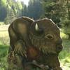 Bison (WA-Gr. 1)