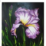 Nr. 21, Iris Lila, Größe 50 x 40 cm
