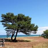 Ostseeküste bei Perow