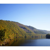 Stausee Rurberg, Eifel