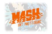 Mash - Cremes aus Basisgemüse