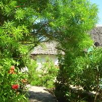 Gartenareal/ gardenarea