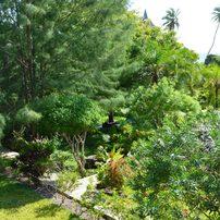 Gartenansicht Balkon Haus Tembo/ view to garden from roof terrace