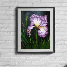 "Nr. 21 ""Iris Lila"" Größe 50x40 cm"