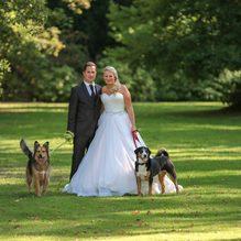 Afterwedding-Shooting mit den geliebten Vierbeinern