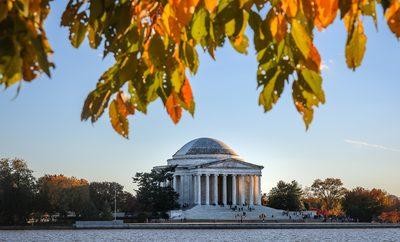 fall in D.C.