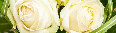 Hochzeitssträuße von Le Orchid