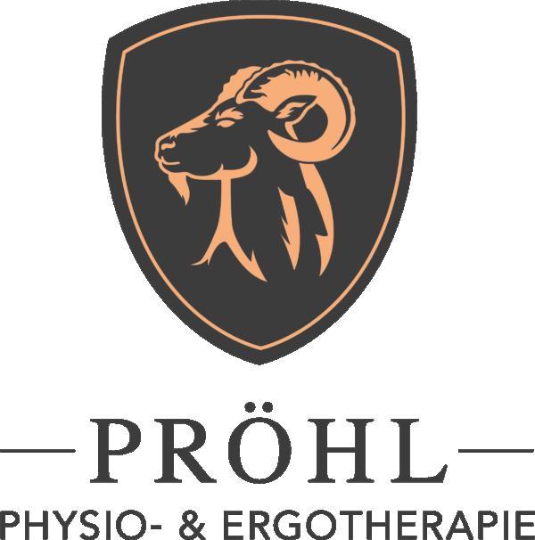 Physio- & Ergotherapie Pröhl