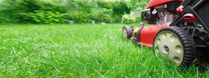 Gartenpflege von ALP Services