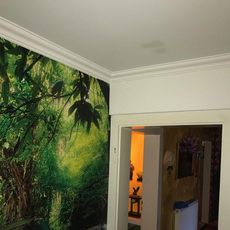 Wanddekorationen Fototapete
